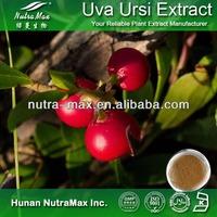 Health Food Uva Ursi Extract Powder, Uva Ursi Powder Extract 4:1 5:1 10:1 20:1