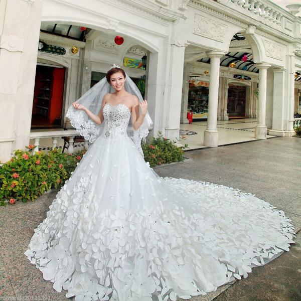 Wedding Gowns With Cathedral Length Train 13
