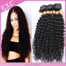 2015 New Arrival 100% Virgin Indian Natural Curly