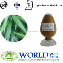 GMP Factory 100% Natural Lophatherum Herb Extract Powder Flavone Bamboo Leaf Extract Lophatherum Leaf Extract