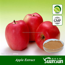 GMP factory supply low price apple extract