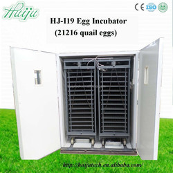 Large supply family fully automatic egg incubators and hatcher for sale
