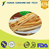 Healthy product high quality Radix codonopsis dried root