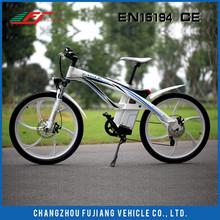 FJTDE01 eagle electric bike,electric bike switch hot sell