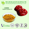 Hot Sale Red Jujube Extract,Red Jujube Extract Powder,Red Jujube Powder