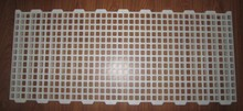 Clean Plastic Poultry Slat Floor For Chicken