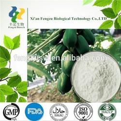 Hot selling papaya leaf extract powder,Dried Papaya powder,Yellow Papaya Fine powder
