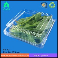 Plastic Clear Disposable Food Packaging Containers
