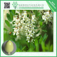 HOT sale sophora japonica extract powder Rutin CAS NO.153-18-4 NF11 99% HPLC free sample