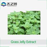Grass Jelly Extract /Instant Grass Jelly Powder /Mesona Powder