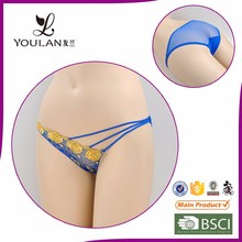 2017 New Design Fitness Young Girl Embroiderey Hot Sexy Transparent Nighty Sexy Lingerie