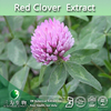 Red Clover Extract Isoflavone, Isoflavones 8%-60% By HPLC,Red Clover Extract 20% Isoflavones