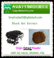 Black Ant Extract or Black Ant Powder