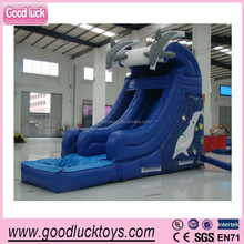 Outdoor giant inflatable trampoline sliding, backyard amusement dolphin water slide