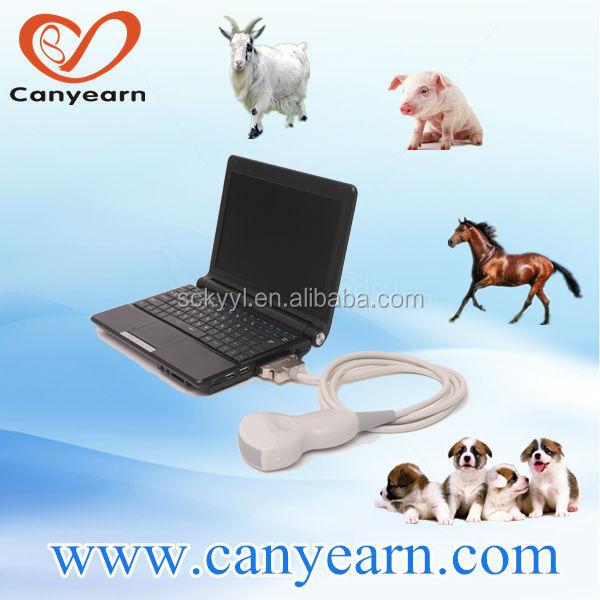 فرسي/ الحصان البقري/ البقر الكلاب/ القطط الكلب/ القط الخنازير/ خنزير الموجات فوق الصوتية