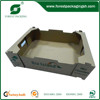 HIGH QUOLITY STRONG CARTON FRUIT TRAY BOX