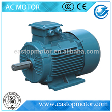 Y2 Series Three Phase construction of squirrel cage induction motor