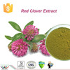 GMP factory making high quality red clover extract,natural trifolium pratense extract
