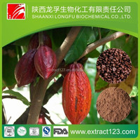 High quality cocoa extract theobromine powder