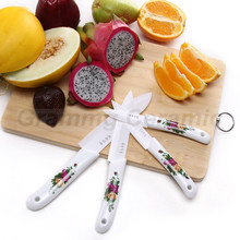 ceramic handle knives kitchen knives sets with knife holder