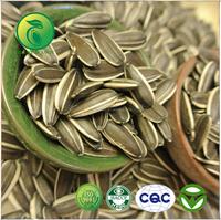bulk organic sunflower seeds sale