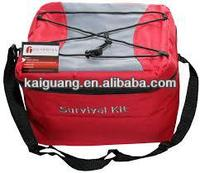 battery powered cooler bags