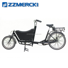 2 wheel Utility Large Carrier Electric Cargo Bicycle