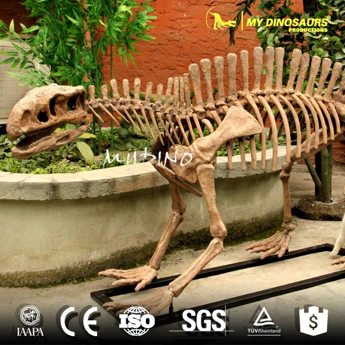Lotosaurus skeleton 2.jpg