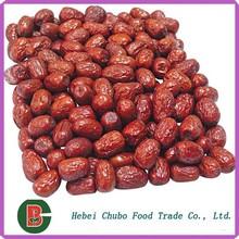 Ziziphus jujube / dulce Red fecha jujube / chinos fechas en rojo / azufaifa secada