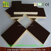 Brown film plywood with gold logo/Marine black or brown phenolic marine plywood