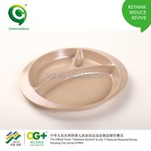 Green Company Kids Plate