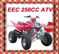NEW 250CC FULL SIZE ATV QUAD, QUAD BIKE