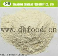 High purity and natural garlic powder 100-120mesh