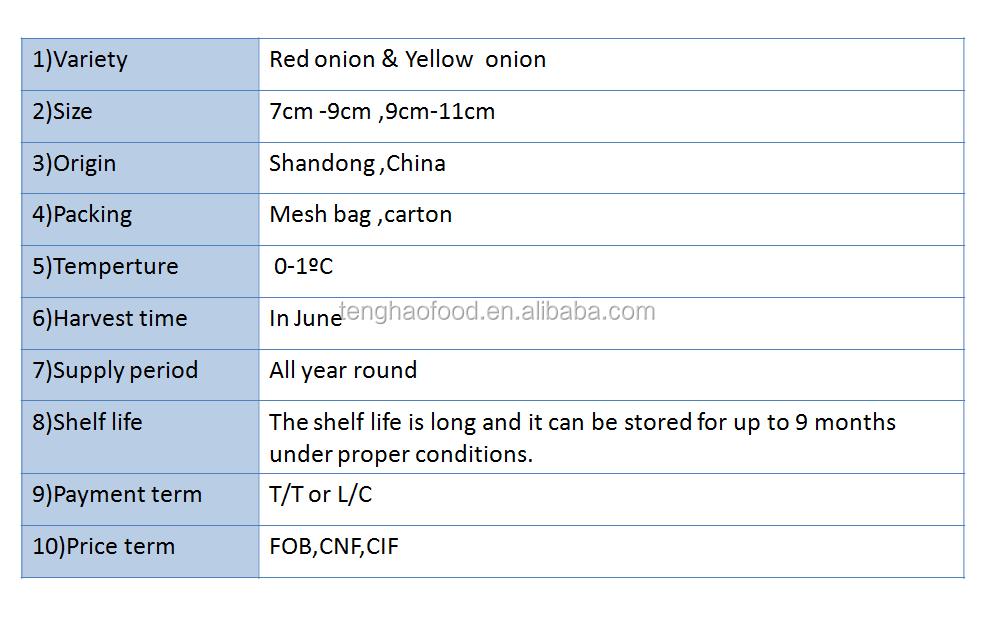 onion description.png