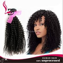 best wholesale brazilian virgin curly hair fashion afro kinky human hair