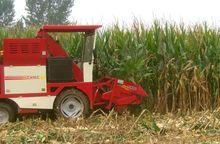 Bangladesh meilleur prix doux maïs moissonneuse batteuse