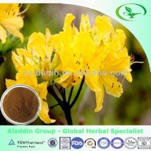 Natural Plant Rhododendron Extract Powder for free sample