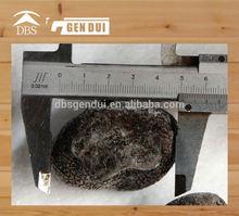 whole black truffle slice Frozen Black Truffle Tuber indicum