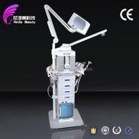 2015 Facial Steamer + Herbal Spray +Ozone factory supply 19 in 1 multifunctional machine