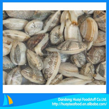 best season full body sand free frozen short necked clam