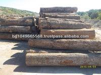 Oak saw logs
