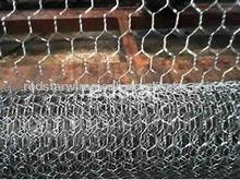 De malla hexagonal ( galvanizado ) avesdecorral para la esgrima