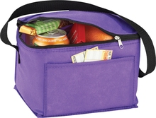 High quality non woven cooler bag/insulated frozen lunch bag