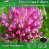Isoflavones Red Clover Flower Powder Extract CAS NO.: 485-72-3