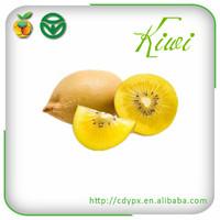 Wholesale Green Fresh Kiwi Fruit Export Rich Vitamin k