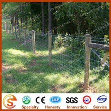 Horse farm fence Knot metal field fence Hinge joint fence