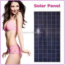 Flexible and economical 300w poly solar panel,pv module with professional skill in China