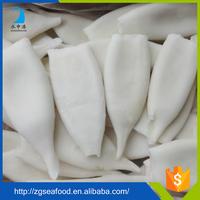 Delicious Frozen HACCP 100% net weight squid tube