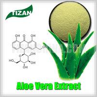 supply aloe vera extract raw material for aloe vera shampoo
