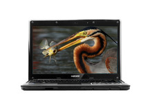 "cheapest 14"" laptop with celeron or i3 CPU, 4G, 500G"